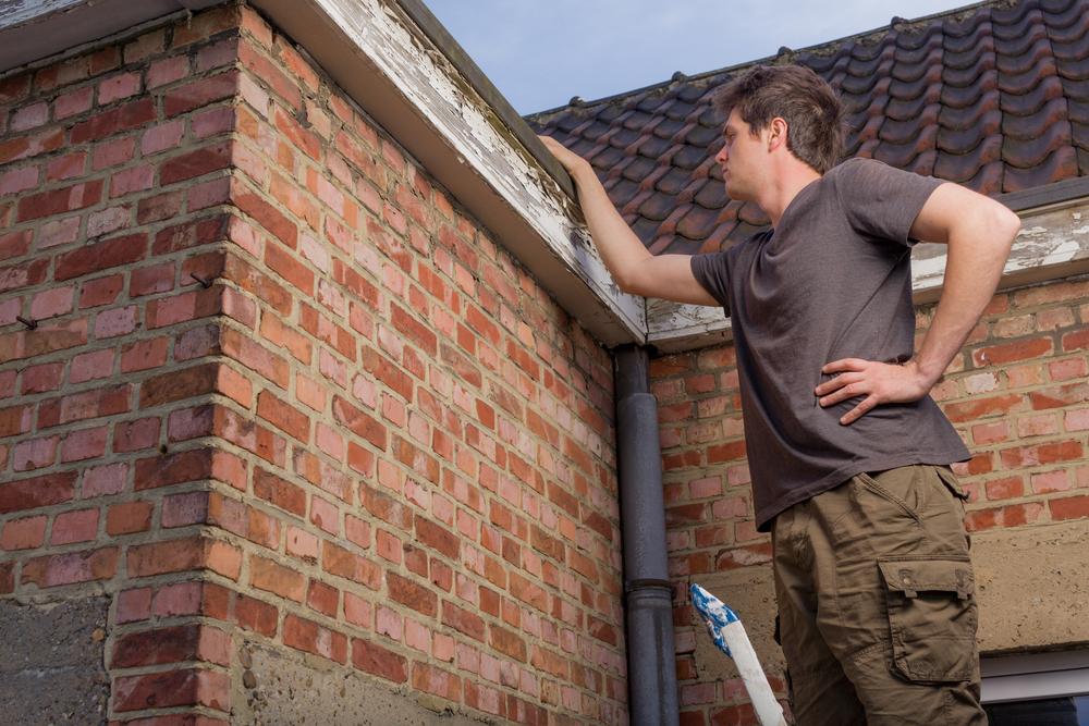 5 ultimative Einsteiger-Tipps für Solarstrom-Neulinge: Tipp Nr. 2 Prüfen Sie Ihr Dach!